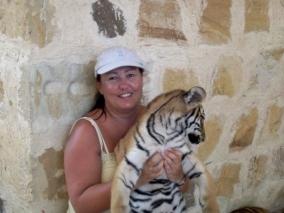 Cuddle a tiger
